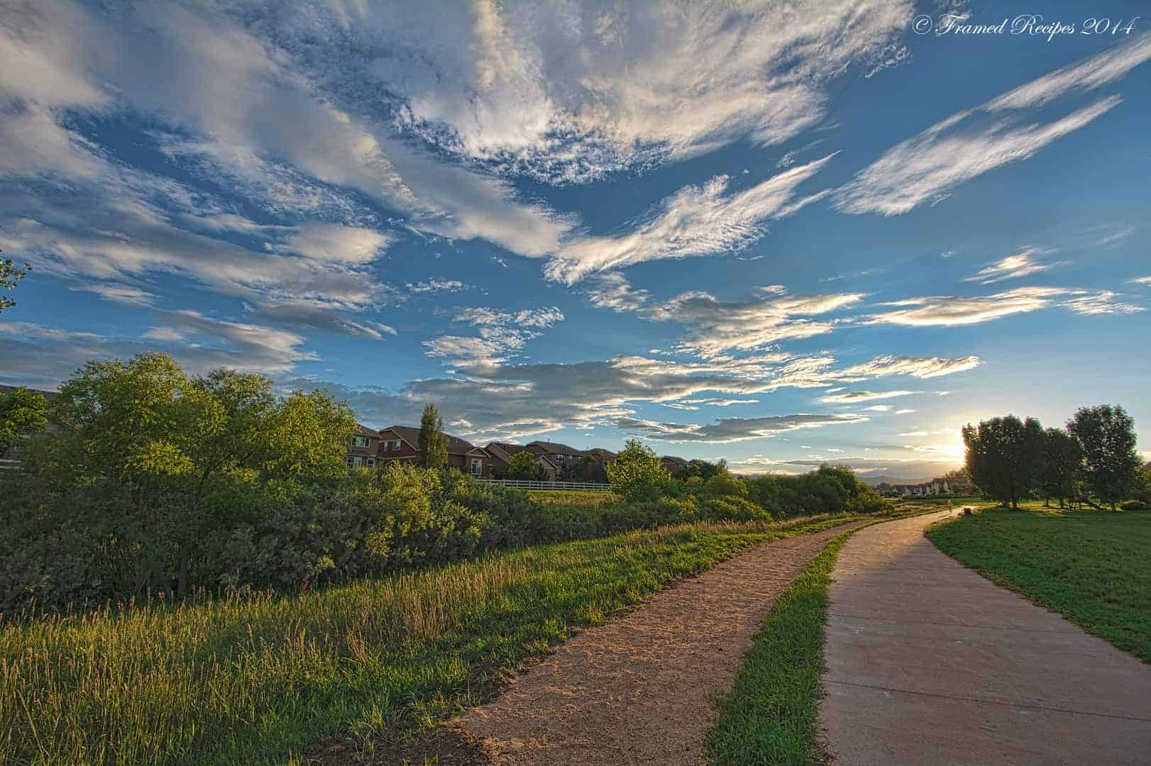 Summer_Path