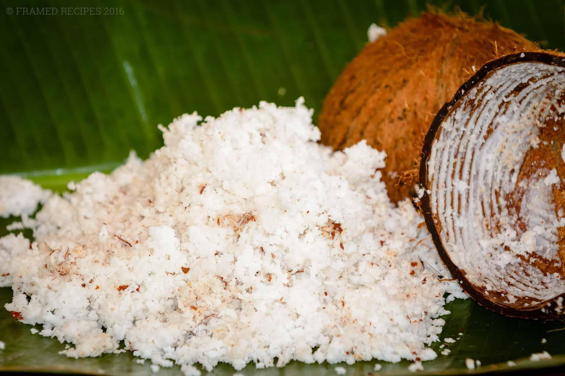 Coconut_101_DSC2805